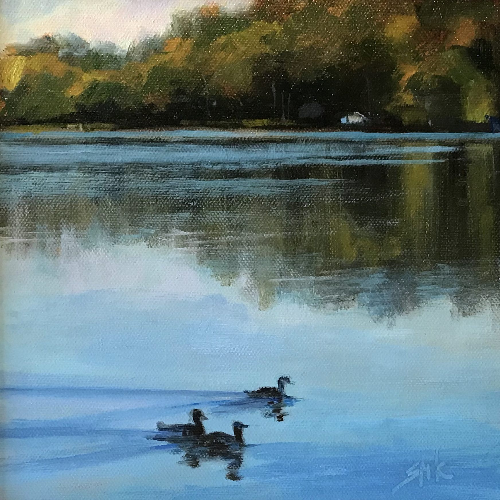 Sandra Kavanaugh Little Island Ducks Oil 8x8 275