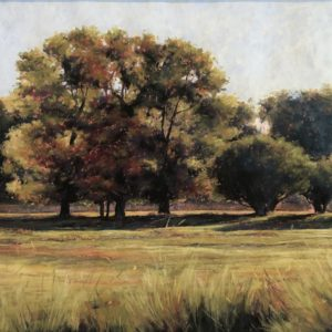 Marcia Blakeman Morning Shadows 11.5x21 1200