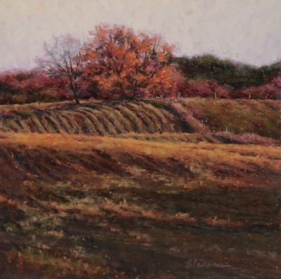 After the Harvest Marcia Blakeman 16x16 625