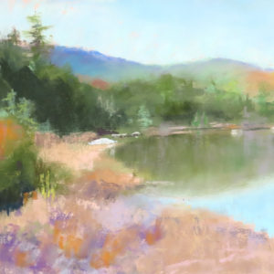 Sandra Kavanaugh Pond Reflections Pastel 9x12 475