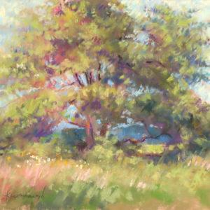Sandra Kavanaugh Abundance Pastel 9x12 475