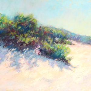 Sandra Kavanaugh Dunes in Sunlight Pastel 9x12 475