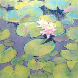 Sandra Kavanaugh Lily Pad Pond Pastel 18x18 800