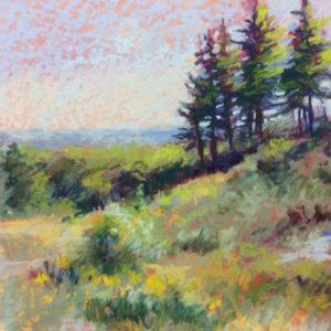 Sandra Kavanaugh Agamenticus Pastel 12x12 550