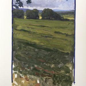Colin Callahan Summer Fields 20x36 1,250
