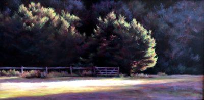 Marcia Blakeman Slice of Light Oil 12x24 900