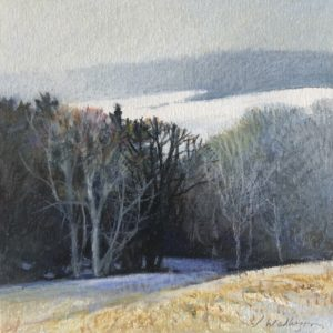 Sandy Wadlington Light Snow Coming Caran d'ache 225