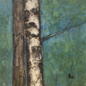 Darlene Robyn Birches #3 Watercolor Collage 6x6 150