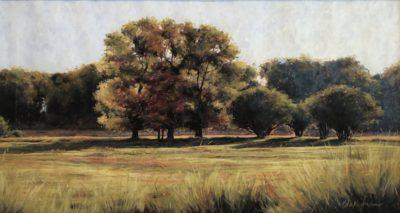 Marcia Blakeman Morning Shadows 11.5x21 1200