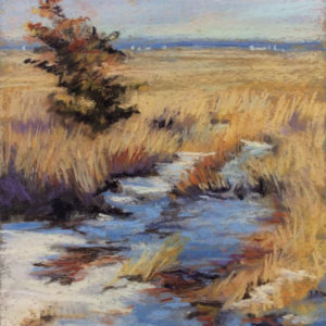 Sandra Kavanaugh Cedar in the Snow Pastel 8x10 400