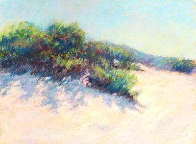 Sandra Kavanaugh Dunes in Sunlight Pastel 9x12 475