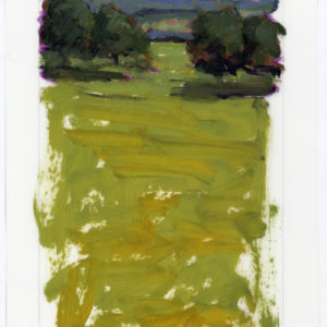 Colin Callahan Golden Fields 20x36 1,250