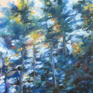 Sandra Kavanaugh Afternoon Light Pastel 12x16 625