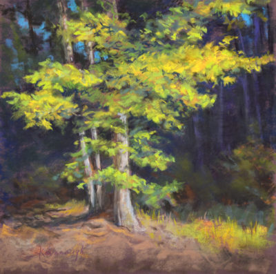 Sandra Kavanaugh Sunlit Oak Pastel 12x12 550