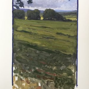 Colin Callahan Summer Fields 20x36 1,250