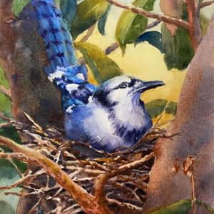 Catherine Tuttle Nesting Syndrome watercolor 7x9 250