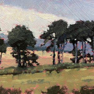 Colin Callahan Trees oil 3.5x5 125