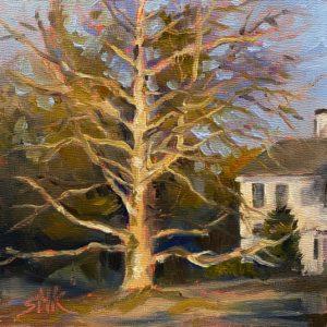 Sandra Kavanaugh Majestic Tree oil 6x6 150