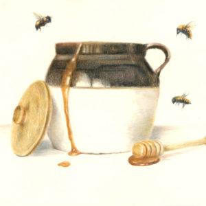 Josee Severino Pot O' Honey colored pencil 11x14 700